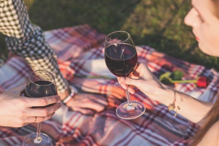 Best Portable Wine Cooler