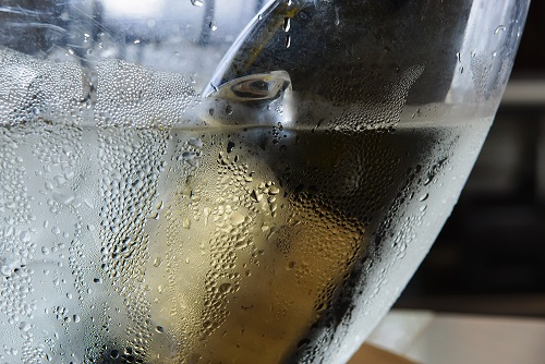 Some Common Problems With Wine Coolers At This Moment 3