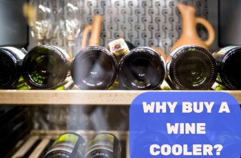 WHY BUY A WINE COOLER